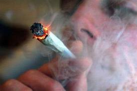 Cannabis 4