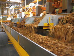 Tabaculture usine SArlat