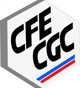 CFE CGC Seita