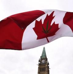Canada: légalisation du cannabis