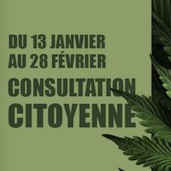 Cannabis : résultats consultation citoyenne