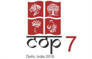 cop7docs-media-accreditation-top-story-300x194